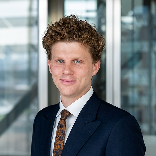 Dutch litigator in the Netherlands